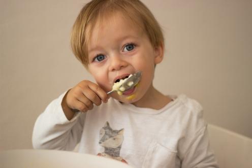 Milchreis Lecker Blog